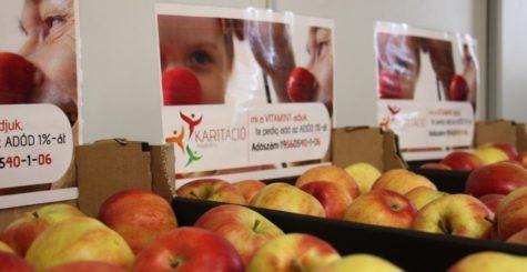 Nagy vitaminakció – Önkénteseink több száz kiló almát osztottak ki